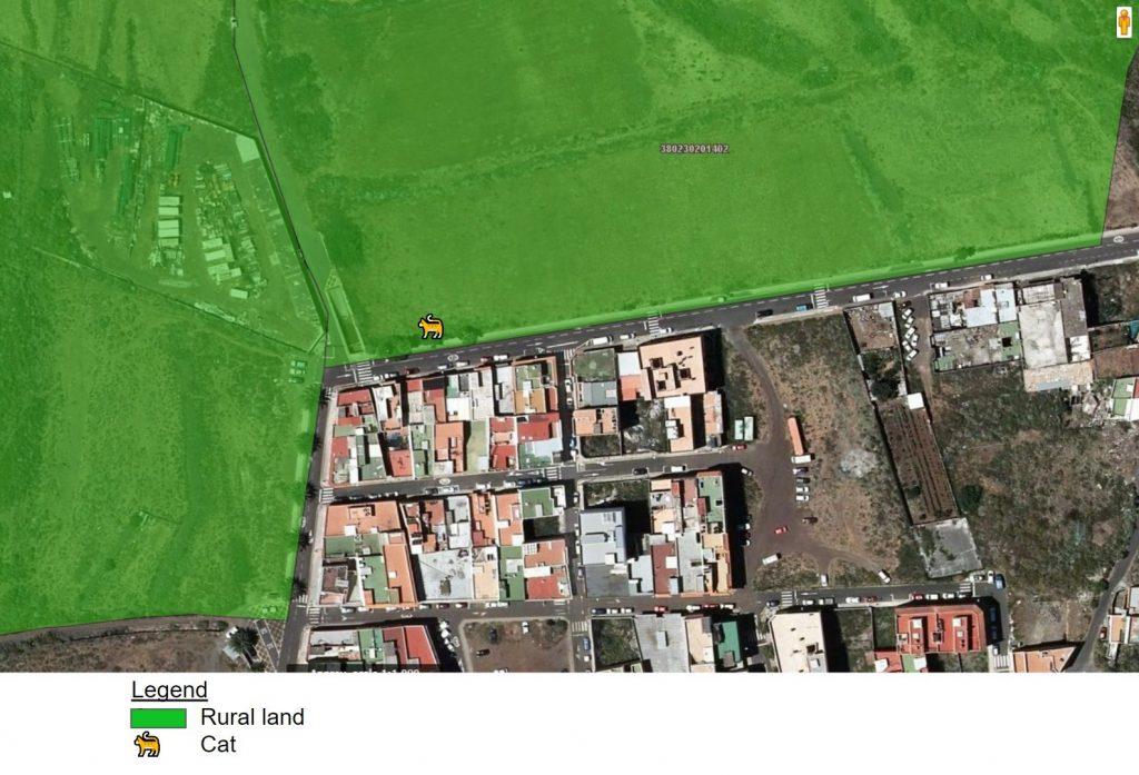 Zoomed in map of northeast La Laguna, showing 🐈 just inside border of rural land