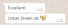 """Screenshot of messages. Message 1: """"Excellent!""""; Message 2: """"Urban Street cat 🐈"""""""
