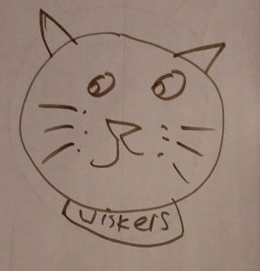 Pen drawing of 'wiskers' the cat